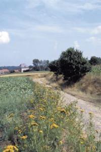 hagelander-hageland-fietsen-motorijden-wandelen